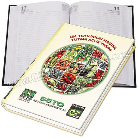 Ucuz Promosyon 17x24 Günlük Ajanda - Sıvama Kapak - Dikişli GAJ620-17